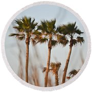 Palm Trees Through Tall Grass Round Beach Towel