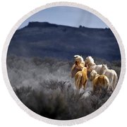 Palomino Buttes Band Round Beach Towel