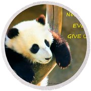 Panda Baby Bear Never Ever Ever Give Up Round Beach Towel