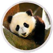 Panda Bear Baby Love Round Beach Towel