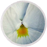 Pansy Flower 19 Round Beach Towel