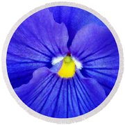 Pansy Flower 37 Round Beach Towel
