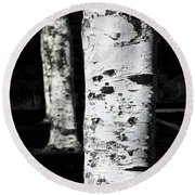 Round Beach Towel featuring the photograph Paper Birch by Aaron Berg
