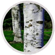Nature Round Beach Towel featuring the photograph Paper Birch Trees by Aaron Berg