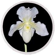 Paphiopedilum Orchid F.c. Puddle Superbum  Round Beach Towel by Susan Wiedmann