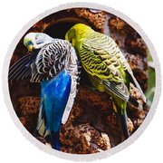 Parakeets Round Beach Towel by Pati Photography
