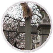 Paris Cemetery Cats - Pere La Chaise Cemetery - Wild Cats On Cross Round Beach Towel