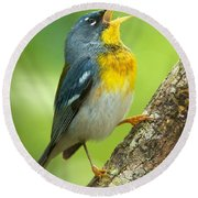 Parula Song Round Beach Towel
