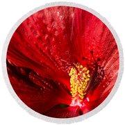 Passionate Ruby Red Silk Round Beach Towel