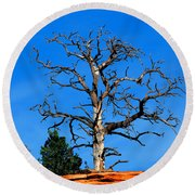 Past Prime Round Beach Towel by Greg Norrell