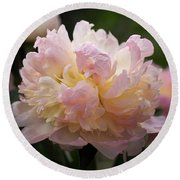 Round Beach Towel featuring the photograph Pastel Peony by Rona Black