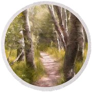 Round Beach Towel featuring the photograph Path 1 by Pamela Cooper