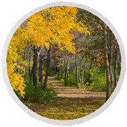 Path Through Autumn Trees Round Beach Towel