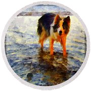 Paws For Thought Round Beach Towel