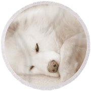 Pawsome Round Beach Towel