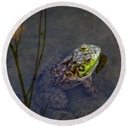 Peace Frog Round Beach Towel