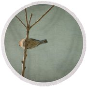 Peaceful Perch Round Beach Towel