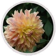 Round Beach Towel featuring the photograph Peach Colored Dahlia by Donna Walsh