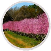Round Beach Towel featuring the photograph Peach Orchard In Carolina by Lydia Holly