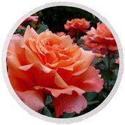 Peach Roses Round Beach Towel
