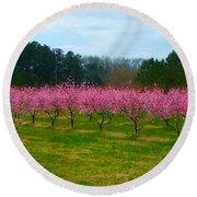 Peach Tree Grove By Jan Marvin Round Beach Towel