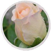 Fragile Peach Rose Bud Round Beach Towel by Belinda Lee
