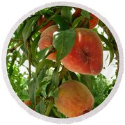 Round Beach Towel featuring the photograph Peaches On The Tree by Kerri Mortenson
