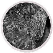 Round Beach Towel featuring the photograph Peacock Bw by Ron White