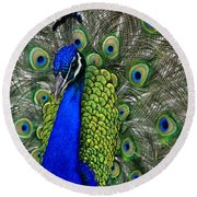 Peacock Head Round Beach Towel