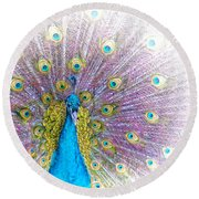 Round Beach Towel featuring the photograph Peacock by Holly Kempe