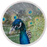 Peacock Portrait Round Beach Towel
