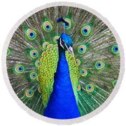 Peacock Round Beach Towel by Roger Becker