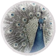 Peacock Square Round Beach Towel