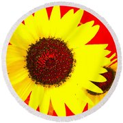 Round Beach Towel featuring the photograph Peek A Boo by Kathy Barney