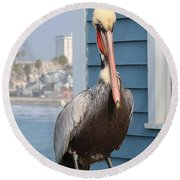 Pelican - 4 Round Beach Towel