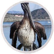 Pelican At Avila Beach Ca Round Beach Towel