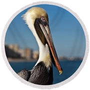 Round Beach Towel featuring the photograph Pelican by Barbara McMahon
