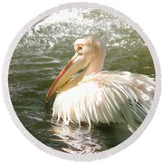 Pelican Bath Time Round Beach Towel