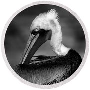 Pelican In Waves Round Beach Towel