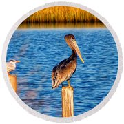 Pelican On A Pole Round Beach Towel