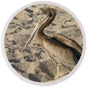 Pelican On Beach Round Beach Towel by DejaVu Designs