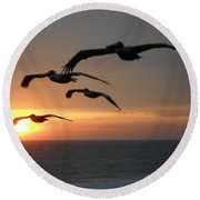 Round Beach Towel featuring the photograph Pelican Sun Up by Laurie L