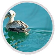 Round Beach Towel featuring the photograph Pelican Swimming by Clare Bevan