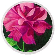 Pencil Rose Round Beach Towel