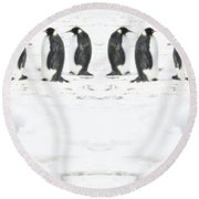 Round Beach Towel featuring the photograph Penguin Lunch Time by R Muirhead Art