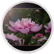 Round Beach Towel featuring the photograph Peony Garden Sun Flare by Patti Deters