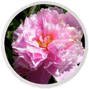 Round Beach Towel featuring the photograph Peony by Sher Nasser