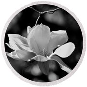 Perfect Bloom Magnolia In White Round Beach Towel