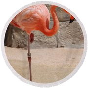 Perfect Pink Flamingo Round Beach Towel by DejaVu Designs
