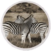 Perfect Zebras Round Beach Towel by Delphimages Photo Creations